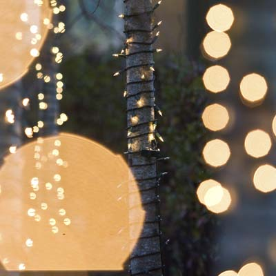 Inexpensive string lights in the garden make it feel magical inviting and
